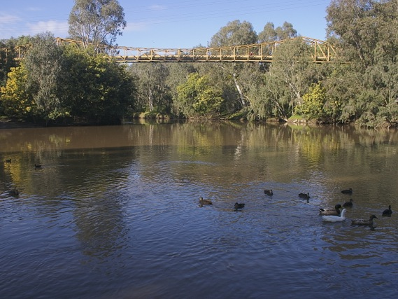 View of the Yarra from Fairfield boathouse