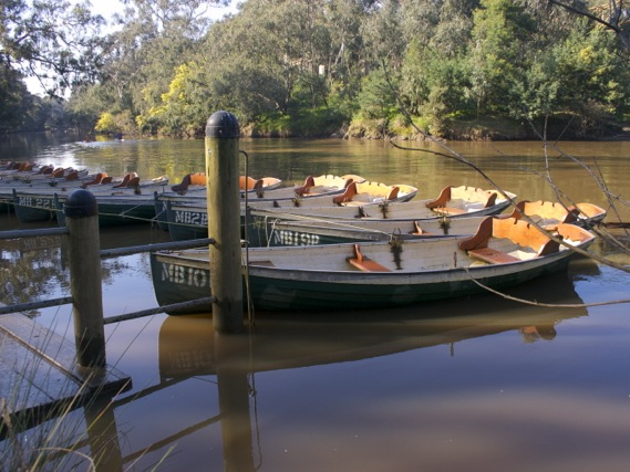 Rowboats at Fairfield Boathouse