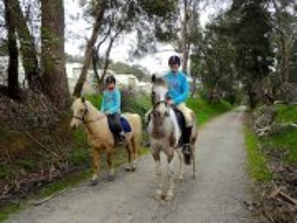 Lilidale Warburton Horse Trail