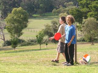 Hedgeend Maze Healesville