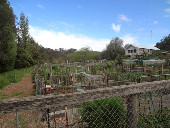Community Gardens along the Main Yarra Trail