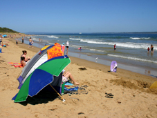 Melbourne Beach at Queenscliffe - the Great Southern Ocean