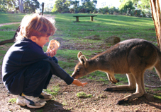Mole Creek Wildlife Park Tasmania