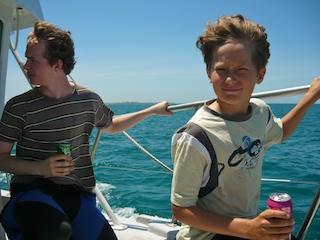dolphin swim cruise Melbourne