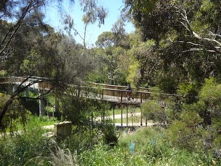 Merri Creek at Coburg